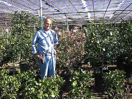 Tom Nuccio. Nuccio's Nurseries, Altadena, California, December 13, 2003.